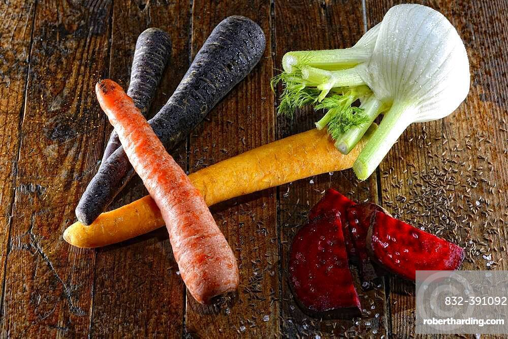 Still life with vegetables, various carrots, fennel and beetroot