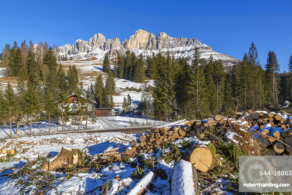 Logs by mountains in winter in Carezza, Italy, Europe