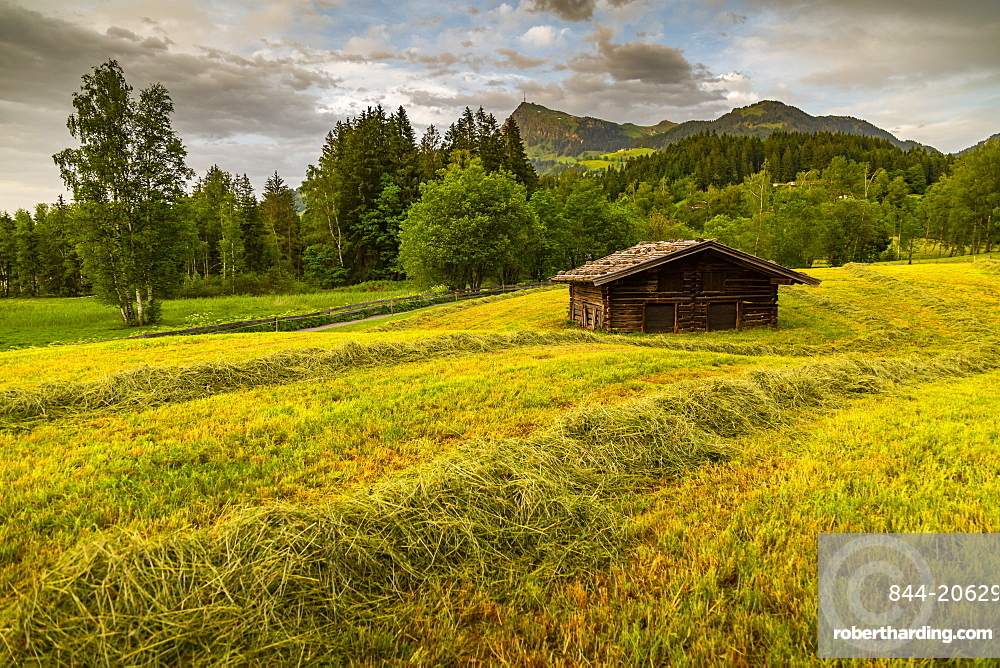 View of traditional log cabin at Schwarzsee near Kitzbuhel, Tyrol, Austria, Europe