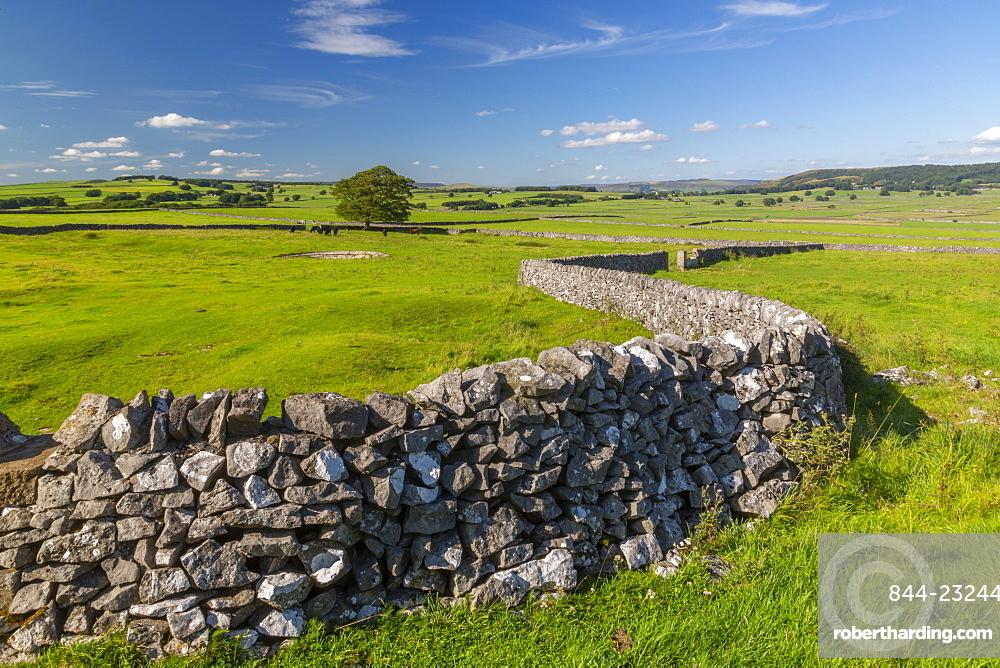 View of dry stone walls near Litton, Peak District National Park, Derbyshire, England, United Kingdom, Europe