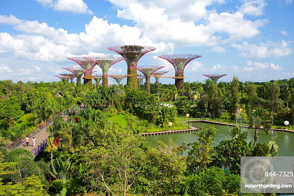 Gardens by the Bay, Singapore, Southeast Asia