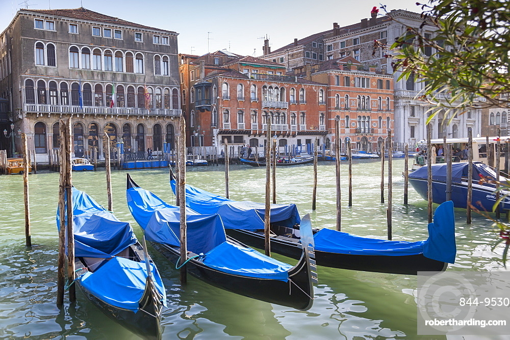 Grand Canal and Gondola Station, Venice, UNESCO World Heritage Site, Veneto, Italy, Europe