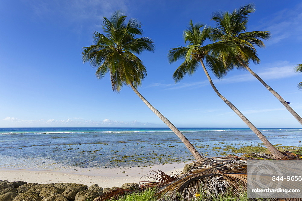 Hastings Beach, Christ Church, Barbados, West Indies, Caribbean, Central America