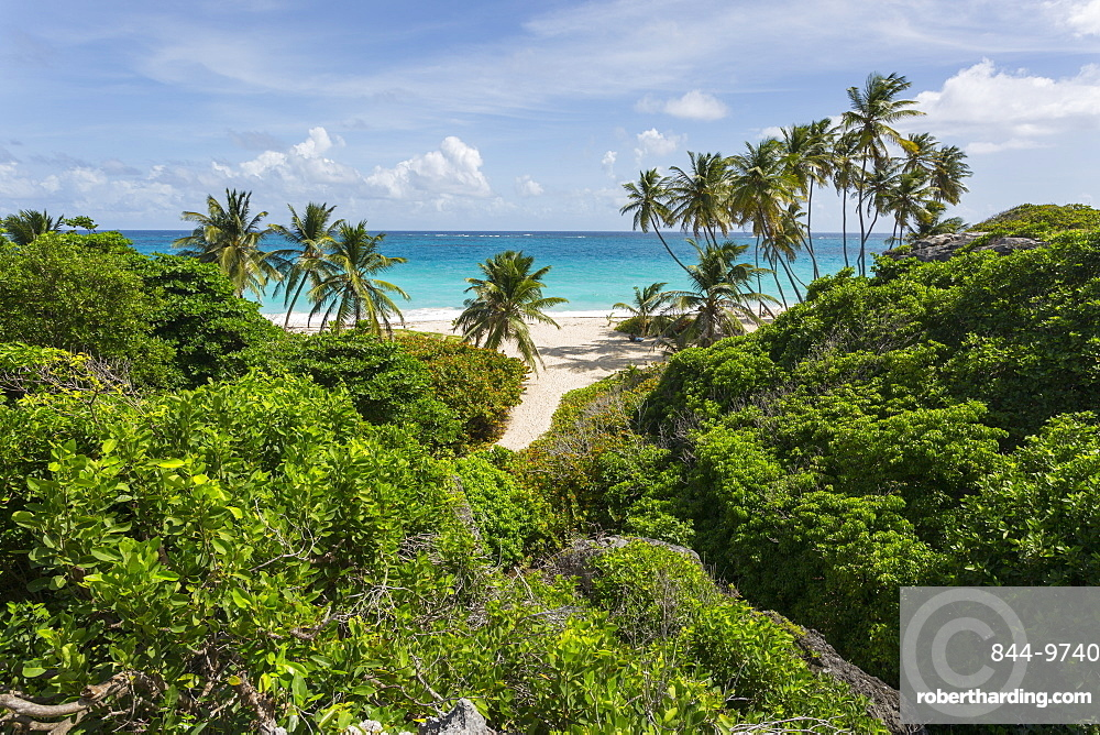 Bottom Bay, St. Philip, Barbados, West Indies, Caribbean, Central America