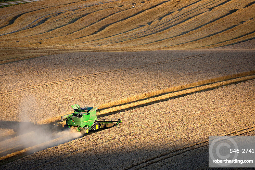 Harvesting wheat with combine harvester, near Winchester, Hampshire, England, United Kingdom, Europe