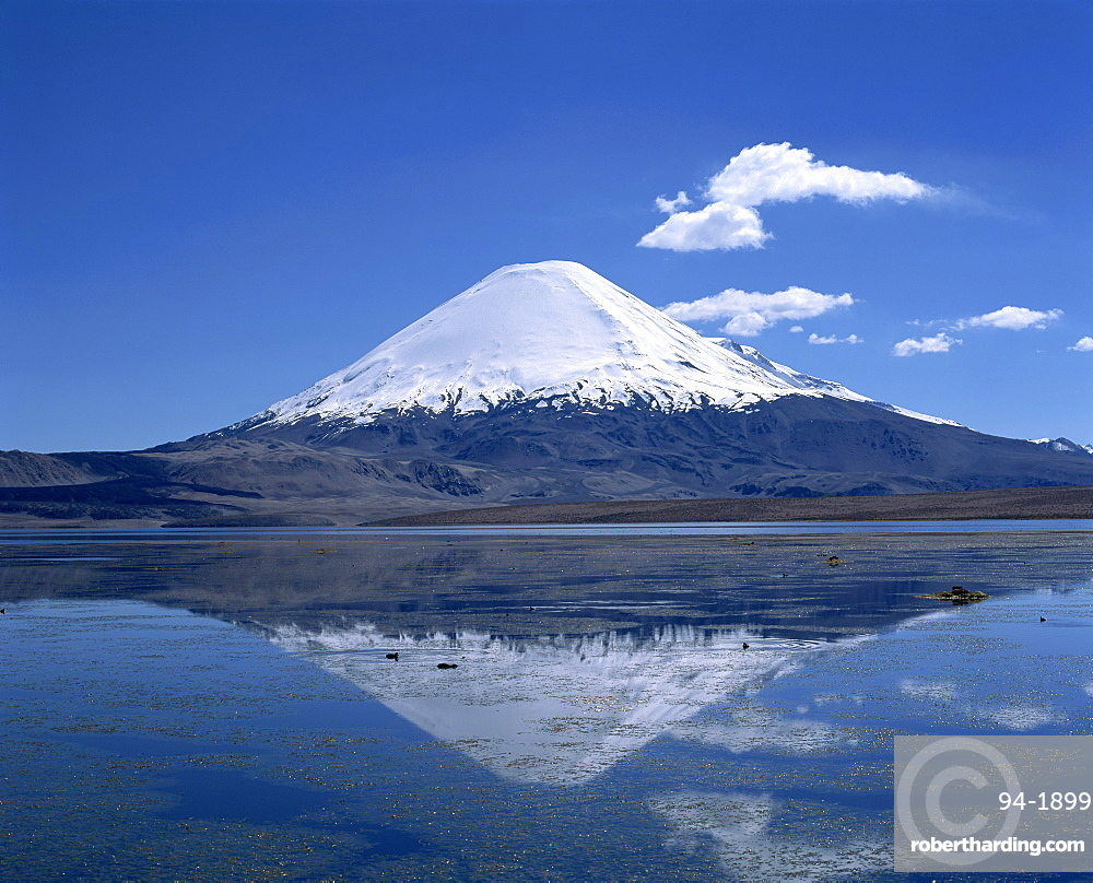 Parinacota volcano and Lake Chungara in the Lauca National Park, Chile, South America