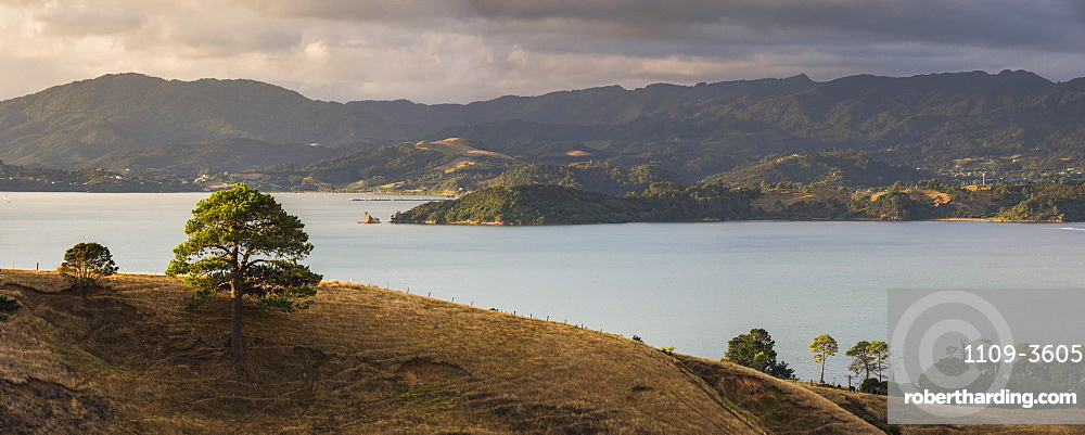 Countryside at Coromandel Town, Coromandel Peninsula, North Island, New Zealand, Pacific