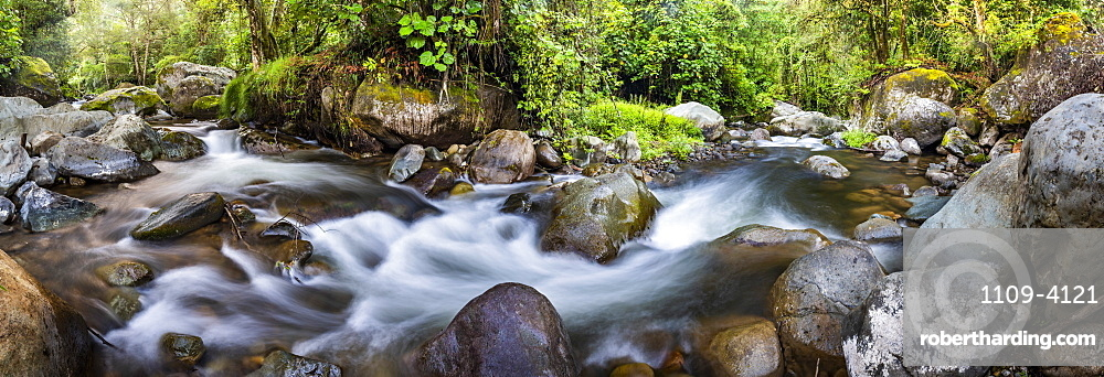 Savegre River (Rio Savegre), San Gerardo de Dota, San Jose Province, Costa Rica