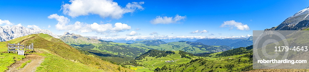Panoramic of green meadows of Alpe di Siusi (Seiser Alm) in summer, Dolomites, South Tyrol, Italy, Europe
