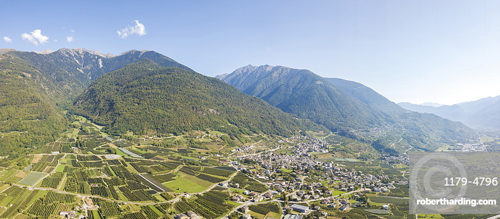 Aerial panoramic of apple orchards in between rural villages and mountains, Valtellina, Sondrio province, Lombardy, Italy, Europe
