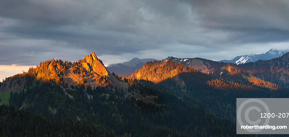 Evening light on mountain peaks, view from Hurricane Ridge, Olympic National Park, UNESCO World Heritage Site, Washington State, United States of America, North America