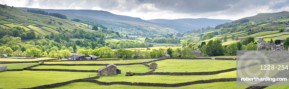 Dales out barns and dry stone walls at Gunnerside in Swaledale, The Yorkshire Dales National Park, UK.