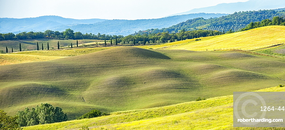 Meadows, Asciano, Val d'Orcia (Orcia Valley), UNESCO World Heritage Site, Tuscany, Italy, Europe