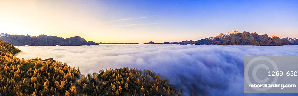 Aerial view of Malenco valley covered by fog at sunrise, Valmalenco, Valtelllina, Lombardy, Italy, Europe