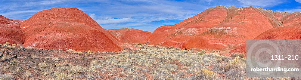 Mounds of a volcanic clay called Bentonite in the Petrified Forest National Park, Arizona, United States of America, North America