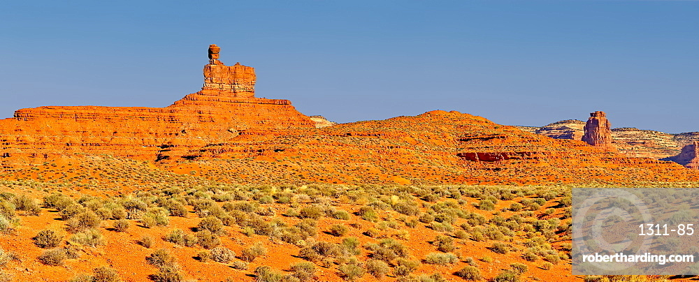 Rock formation in Valley of the Gods called Lady in the Bath Tub, Located near the town Mexican Hat, Utah, United States of America, North America