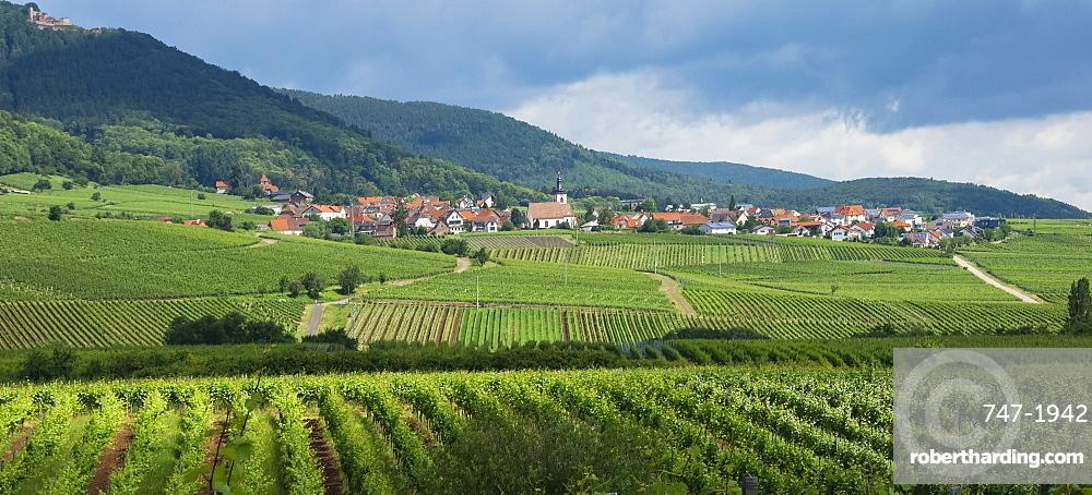 Village in the vineyards, Pfalz area, Rhineland-Palatinate, Germany, Europe