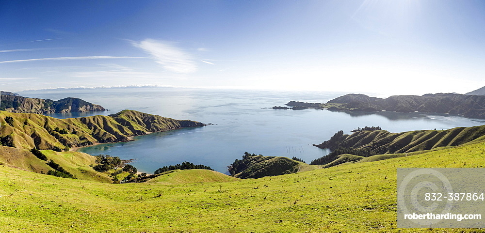 Meadows and rocky coast, Strait French Pass, Marlborough, New Zealand, Oceania