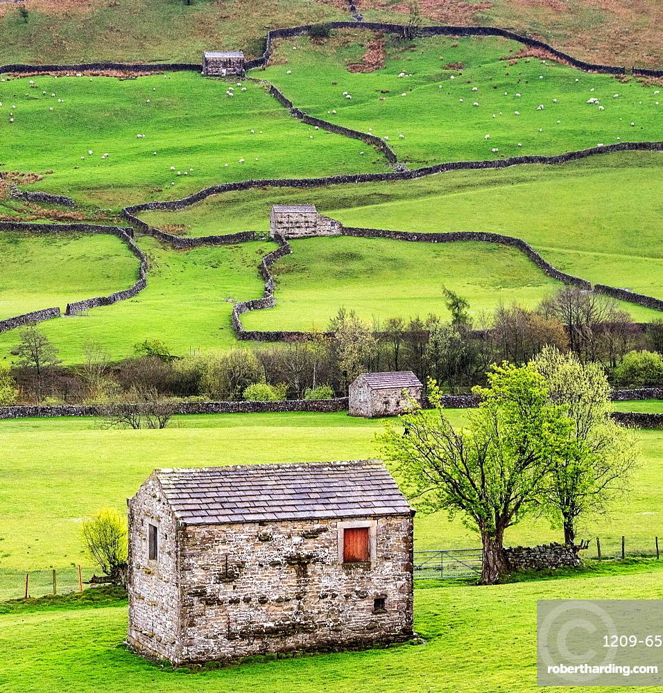 Hay barns, Muker, Swaledale, Yorkshire Dales, Yorkshire, England, United Kingdom, Europe