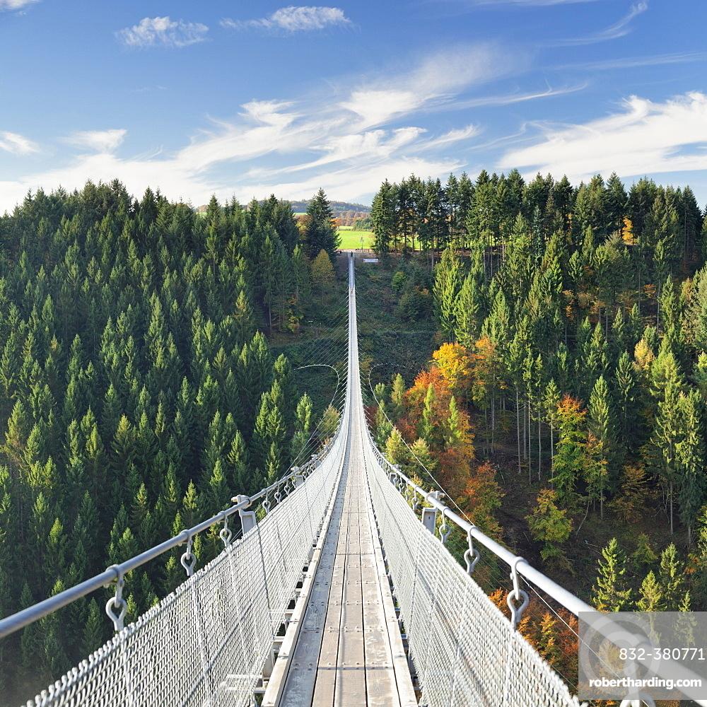 Hanging rope bridge Geierlay, Mörsdorfer Bachtal, Mörsdorf, Hunsrück, Rhineland-Palatinate, Germany, Europe