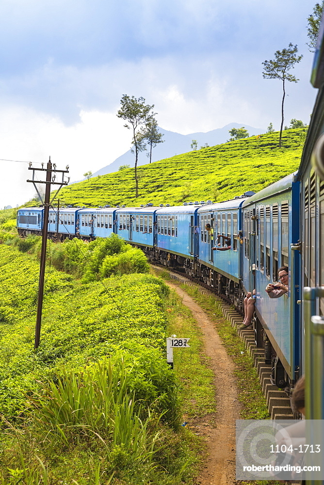Sri Lanka, Nuwara Eliya, Kandy to Badulla train alongside tea estate