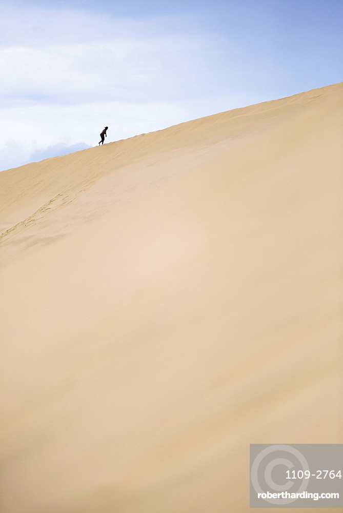 Tourist climbing Te Paki Sand Dunes on 90 Mile Beach, Northland, North Island, New Zealand, Pacific