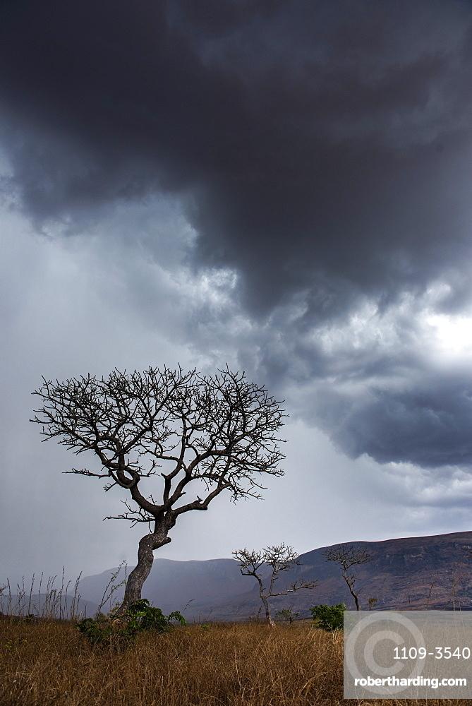 Stormy landscape, Ambalavao, Haute Matsiatra Region, Madagascar, Africa