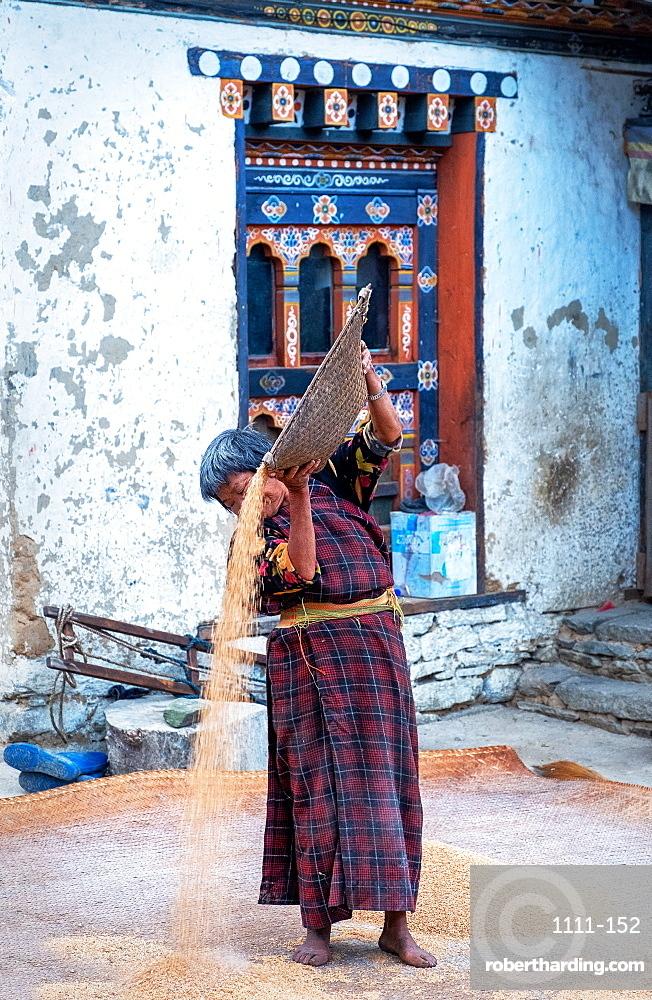 Traditional rice sifting at Tshangkha Village, near Trongsa.