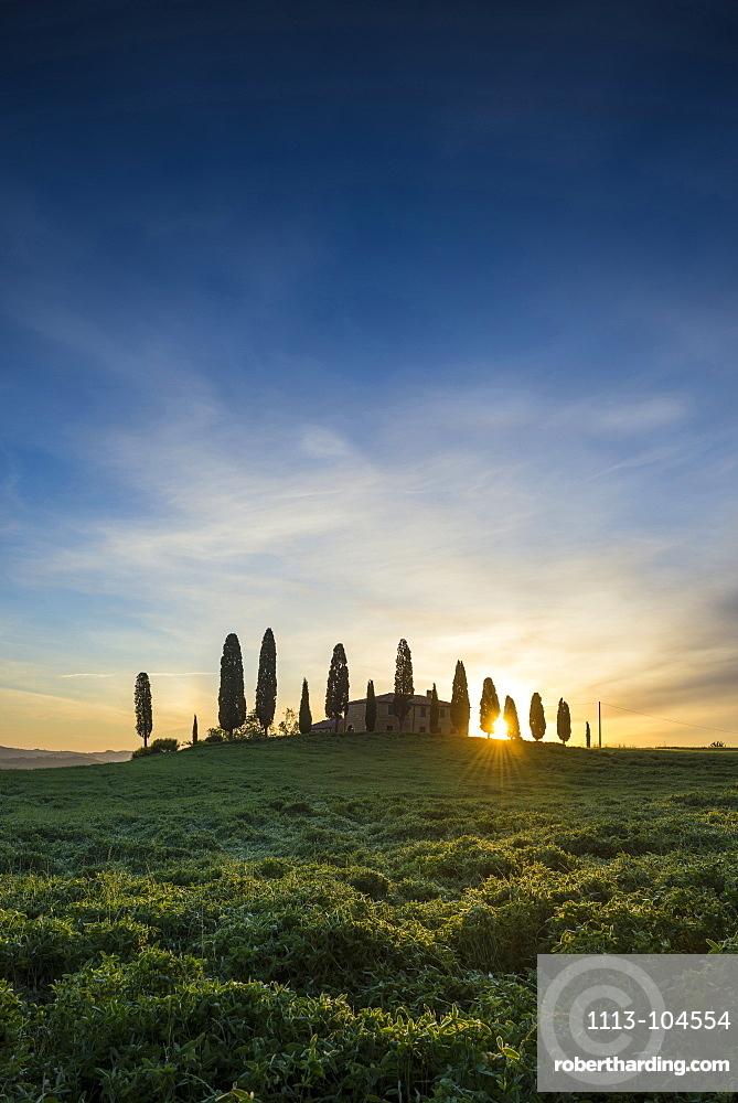 landscape near Pienza, Val d`Orcia, province of Siena, Tuscany, Italy, UNESCO World Heritage