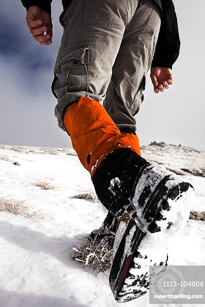 Hiker walking in snow, ascend to Unnutz Mountain (2078 m), Rofan Mountains, Tyrol, Austria