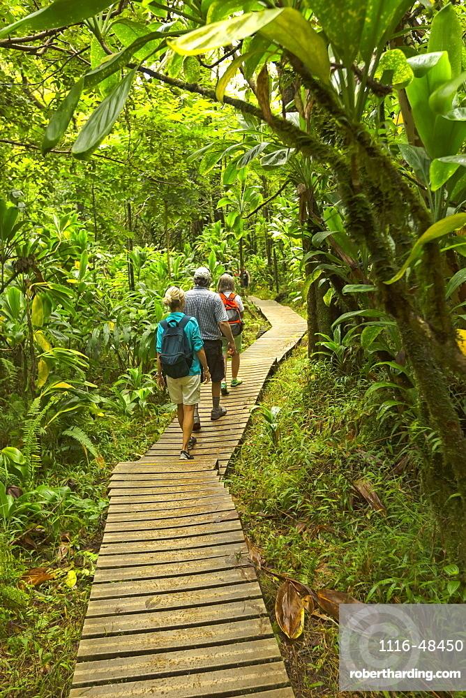 Tourists on boardwalk to Waimoku Falls, Kipahulu, Maui, Hawaii, United States of America
