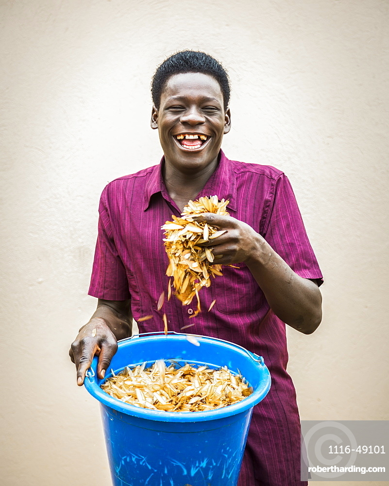 A young man holds a pail and a handful of roasted white ants (Isoptera), Gulu, Uganda