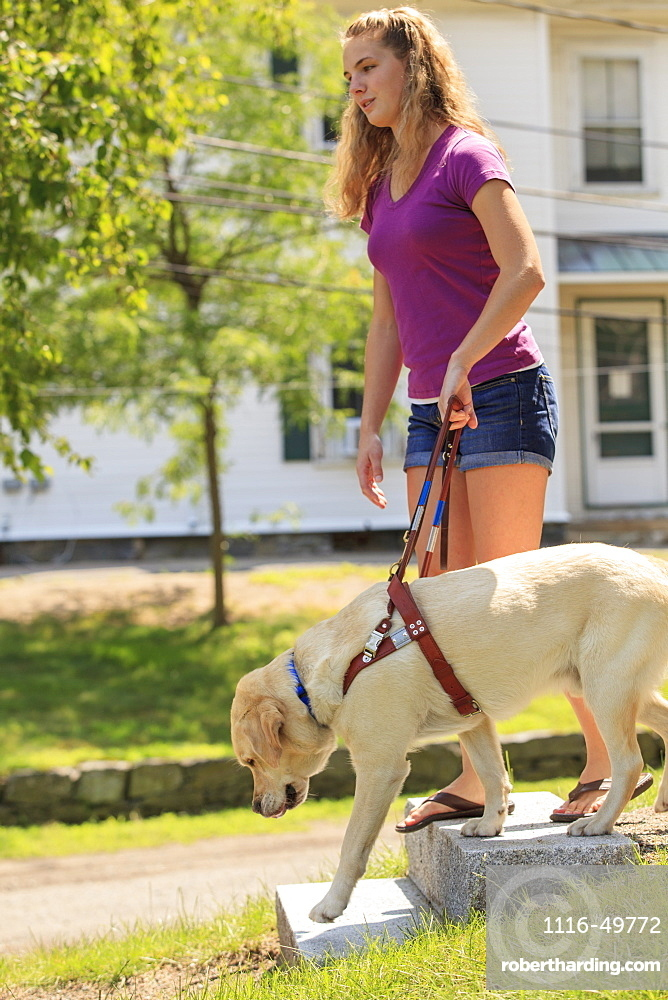 Service dog helping a woman with visual impairment down stairs