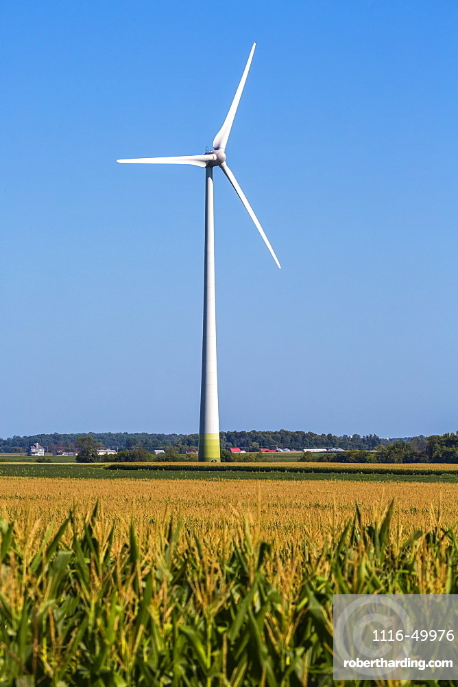 Wind turbines on farmland with a corn field in the foreground; Saint Remi, Quebec, Canada