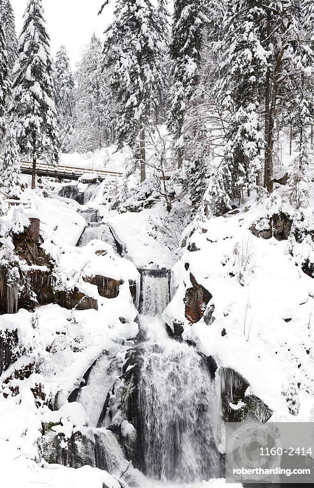 Triberg Waterfalls in winter, Triberg, Black Forest, Baden-Wurttemberg, Germany, Europe