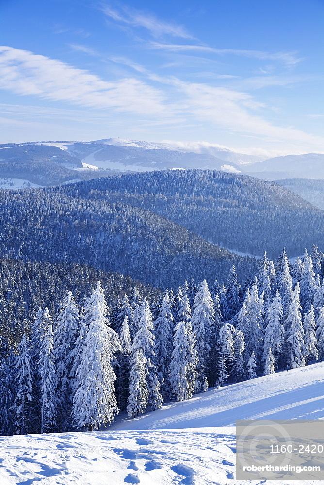 View from Belchen Mountain to Feldberg Mountain in winter, Black Forest, Baden-Wurttemberg, Germany, Europe