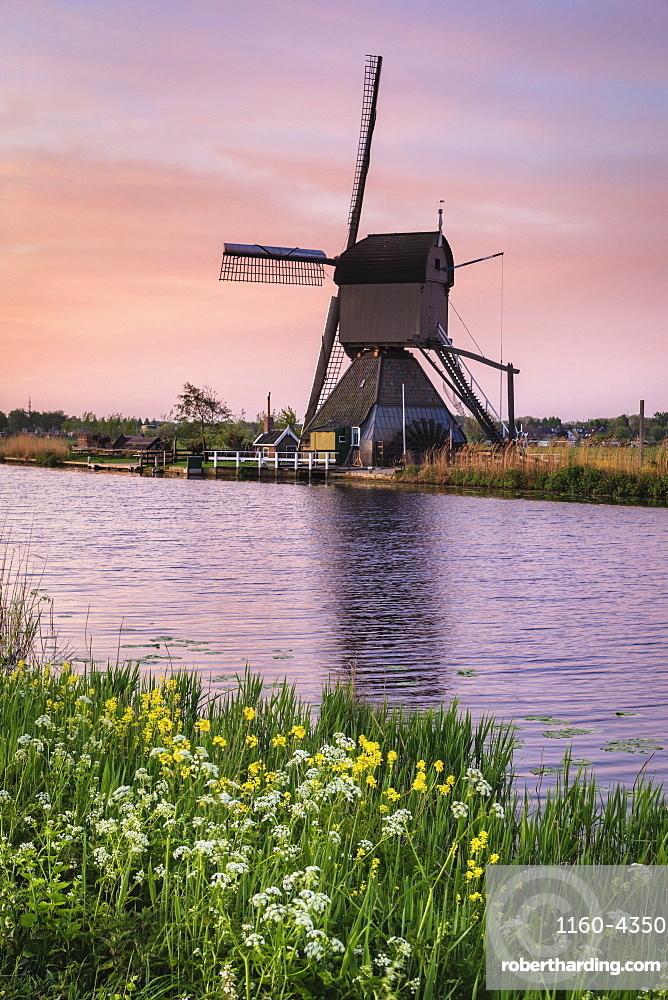 Windmill at sunrise, Kinderdijk, UNESCO World Heritage Site, South Holland, Netherlands, Europe