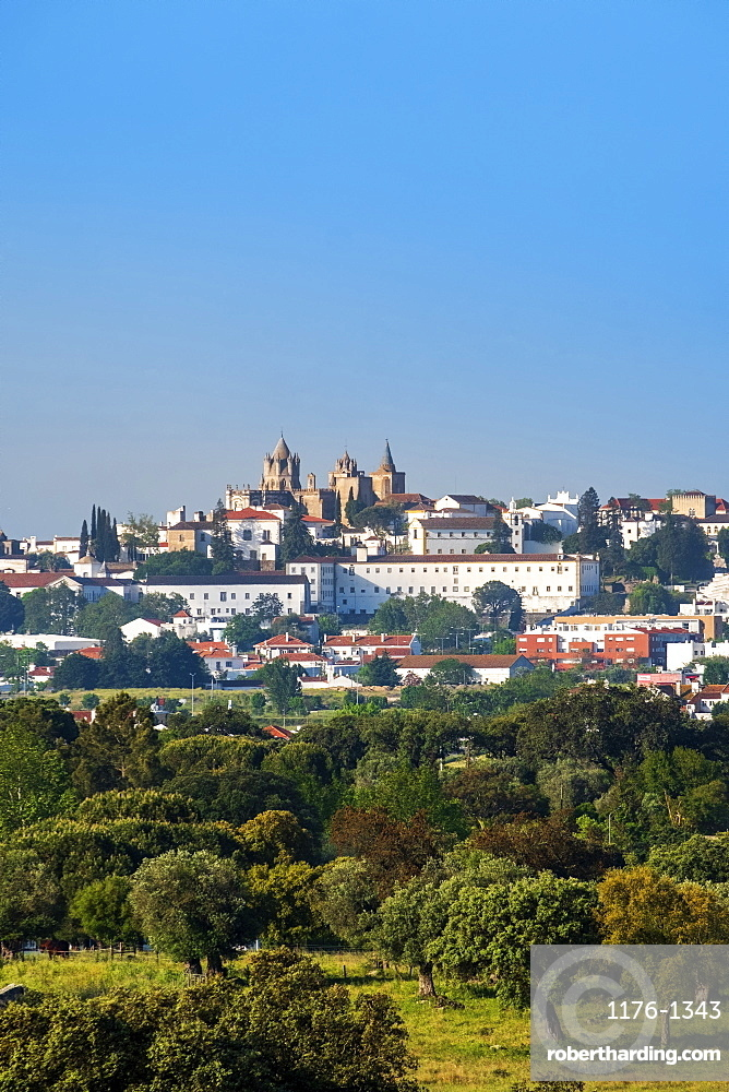 View of the medieval city and capital of the region across cork oak woodland, Evora, Alentejo, Portugal, Europe