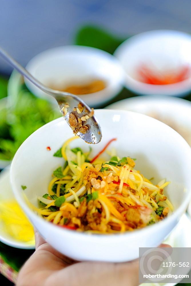 Spicy salad, Vietnamese food, Vietnam, Indochina, Southeast Asia, Asia