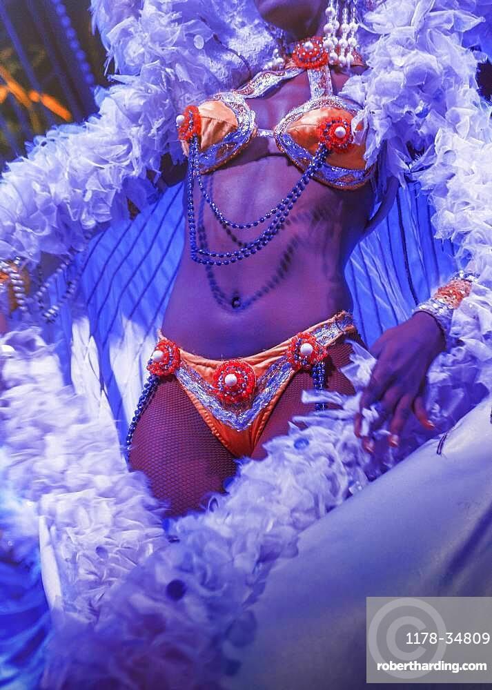 Performer wearing bikini and feather boa