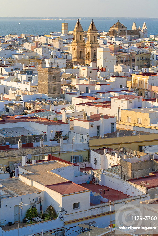 View from Torre Tavira of white houses in Cadiz, Spain, Europe