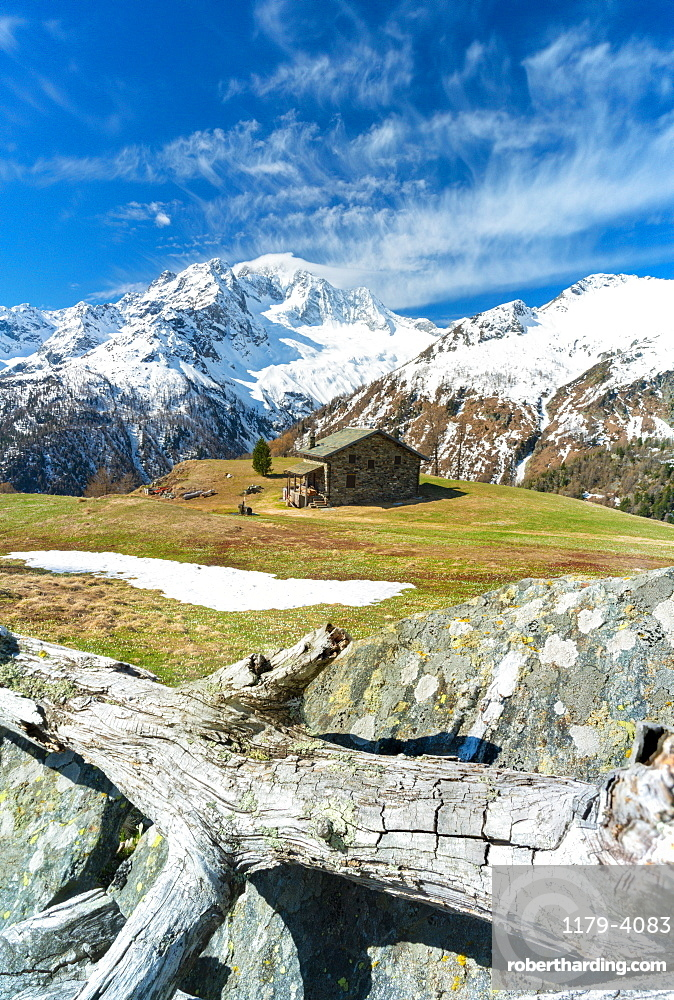 Hut in green pastures with snow capped Monte Disgrazia in background, Alpe Oro, Valmalenco, Valtellina, Lombardy, Italy