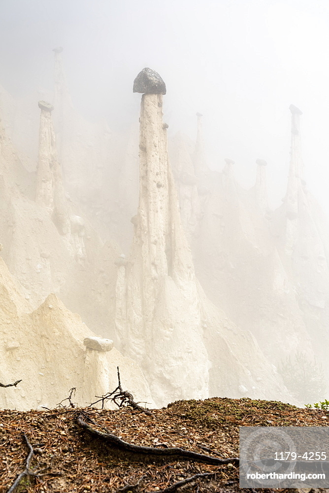 Rock pinnacles of the Earth Pyramids emerging from fog, Perca/Percha, province of Bolzano, South Tyrol, Italy