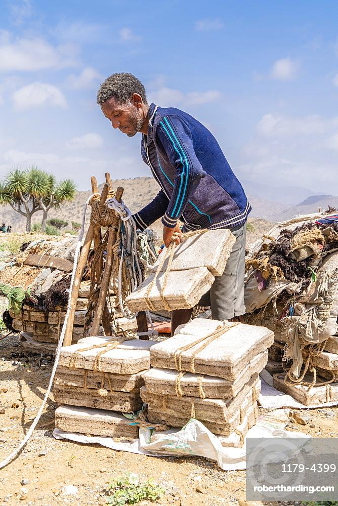 Miner picking up salt blocks extracted from salt flats, Dallol, Danakil Depression, Afar Region, Ethiopia, Africa