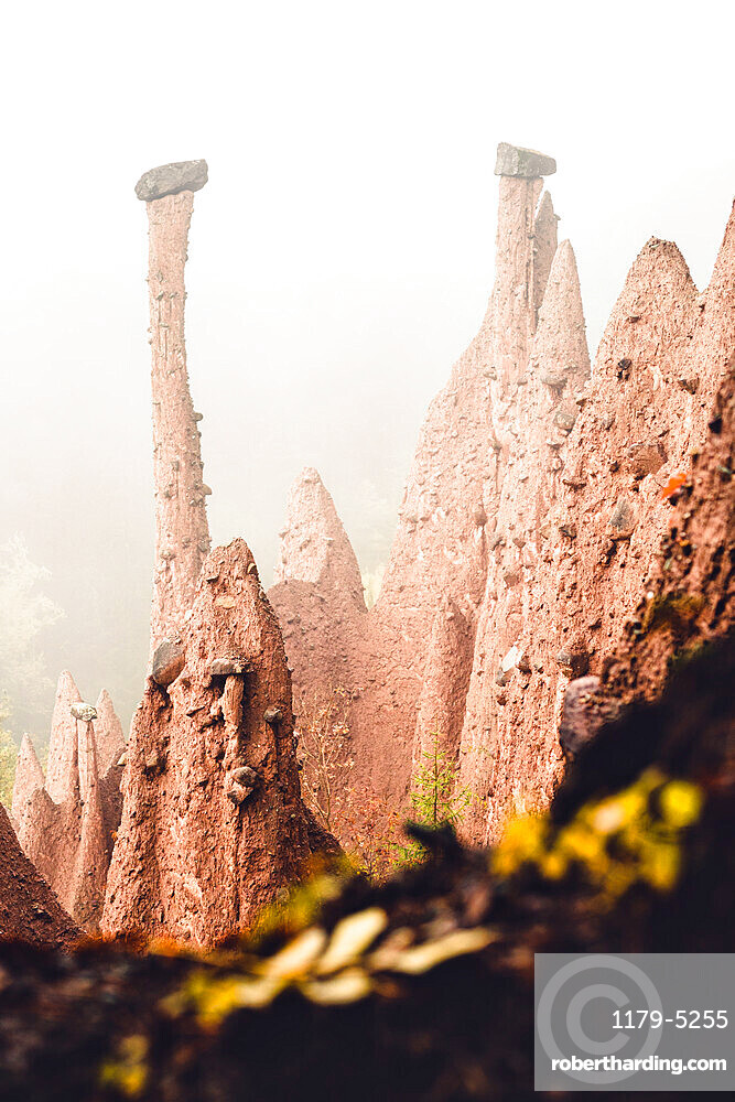 Conical rock pillars of the earth pyramids emerging from fog, Renon/Ritten, Bolzano, South Tyrol, Italy