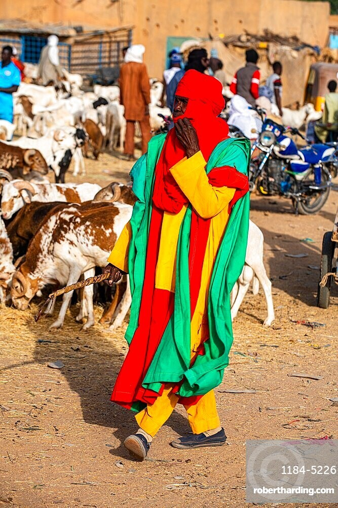 Bodyguards of the Sultan of Agadez, Animal market, Unesco world heritage site Agadez, Niger