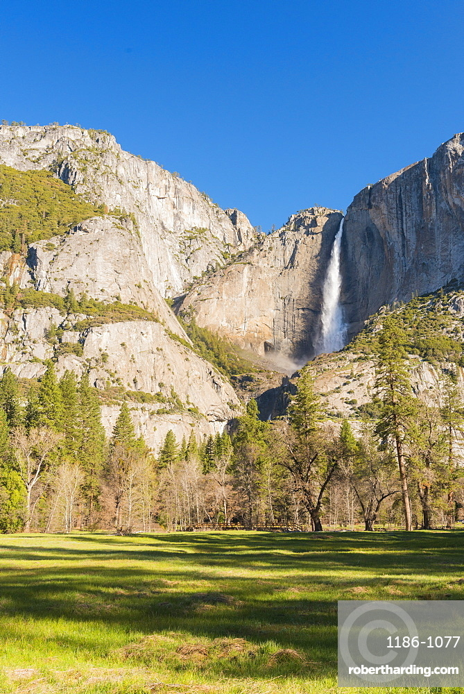 Yosemite National Park, UNESCO World Heritage Site, California, United States of America, North America