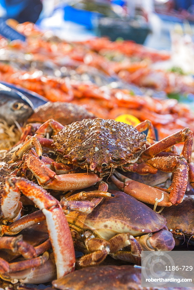 Crabs at the fish market, Aix en Provence, Bouches du Rhone, Provence, Provence-Alpes-Cote d'Azur, France, Europe