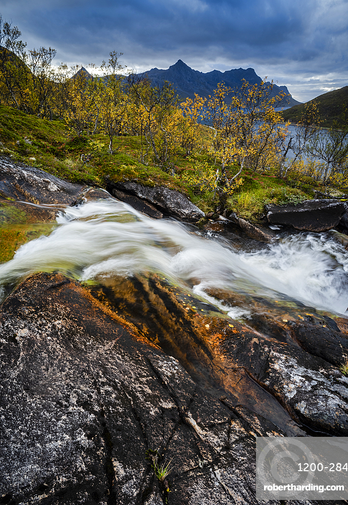Waterfall and autumn colour in Anderdalen National Park, Senja, Norway, Scandinavia, Europe