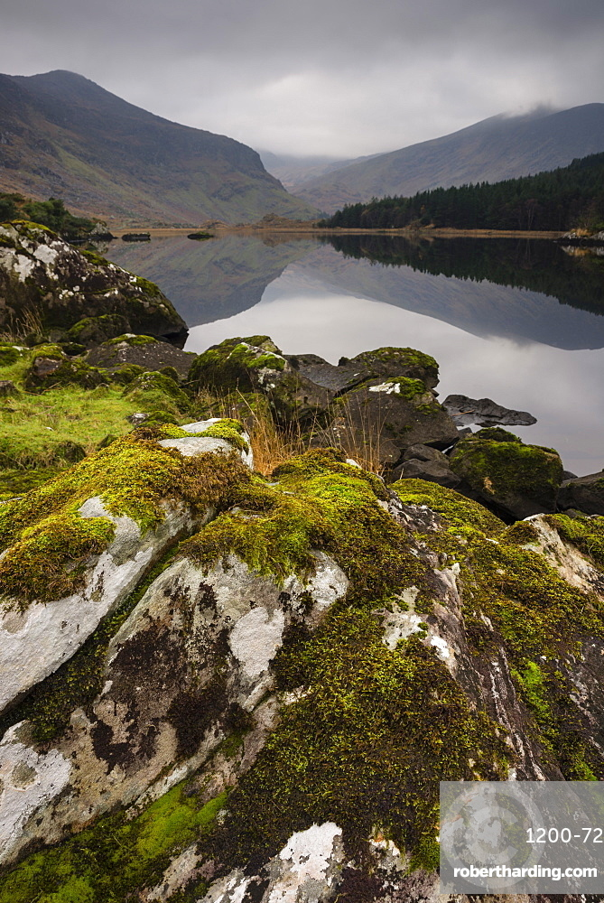 Moss covered rock, mountains and reflections in Cummeenduff Lake, Black Valley, Killarney, County Kerry, Munster, Republic of Ireland, Europe